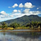 Mount Makiling 1995: Art and Music in the Bosom of Nature