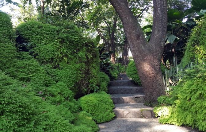 24 David Hall Rock Garden 3