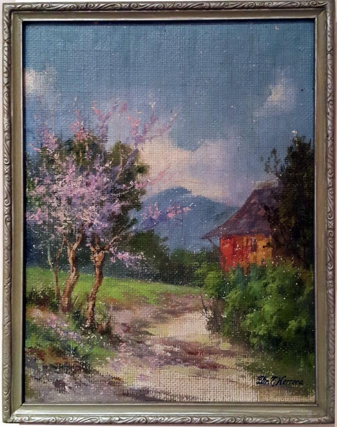 11 1940 Toribio Herrera - Kakawate in Bloom