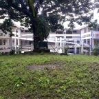 University of the Philippines, Quezon City: Hidden Treasures South of the Academic Oval: Quirino Avenue, T.H. Pardo de Tavera, F, Maramag, E. Delos Santos, Lakandula, and P. Velasquez Streets