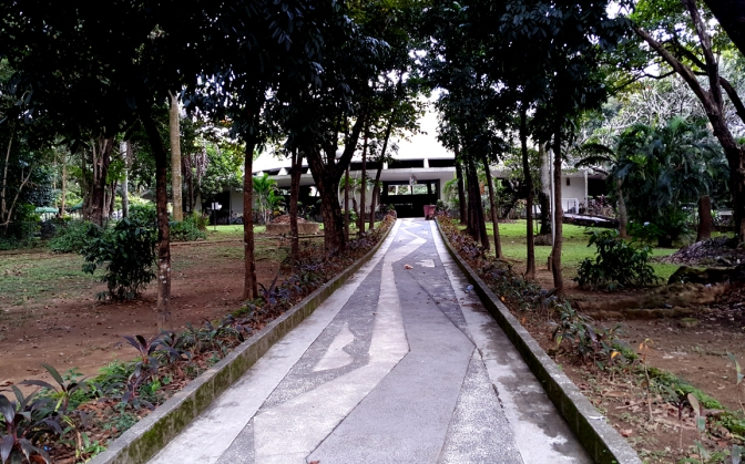 University Of The Philippines Quezon City The Art Of The