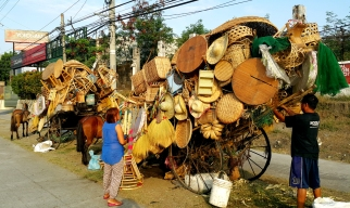 Oxen Vendors, Commonwealth Avenue