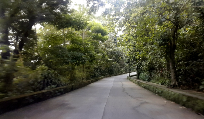 07 2004 La Mesa Ecopark Access Road