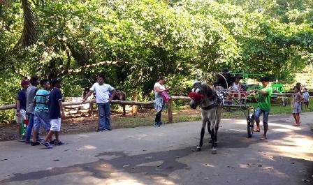 2004 La Mesa Ecopark, Horse Rides