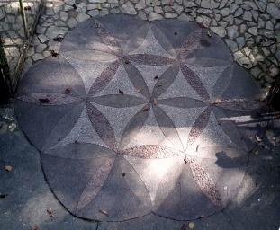 2005 La Mesa Ecopark, Orchidarium