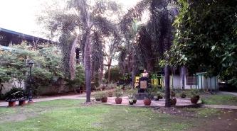 1994 Diamonon Park