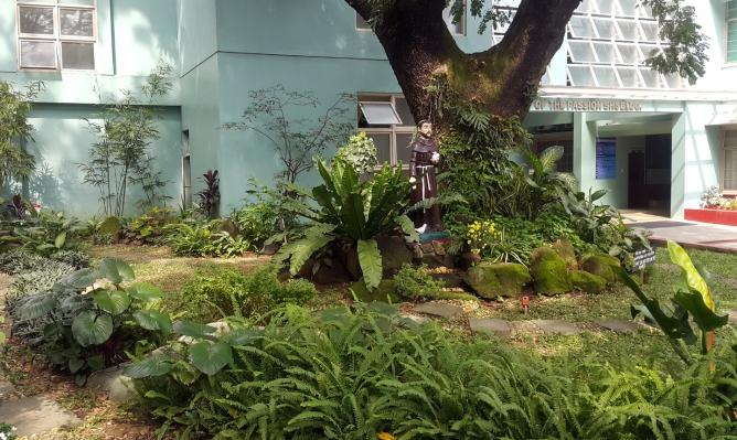 Saint Francis Garden and Tree