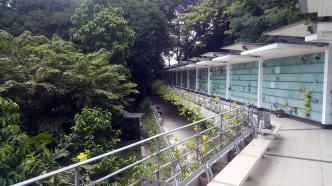2008 Garden of the Divine Word, Main Building