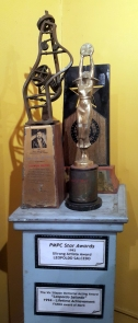 Leopoldo Salcedo Collection