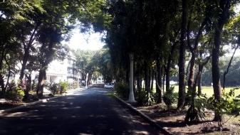 1938 Juan Nakpil - Quezon Institute Main Driveway