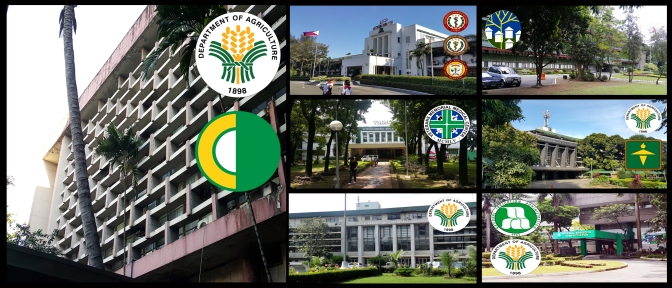 08 Oldest Buildings in the Diliman Quadrangle